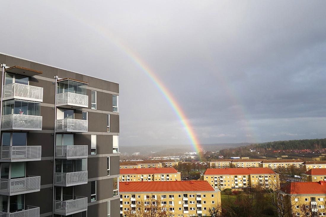 regnbåge 062