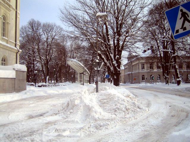vinter_09 010