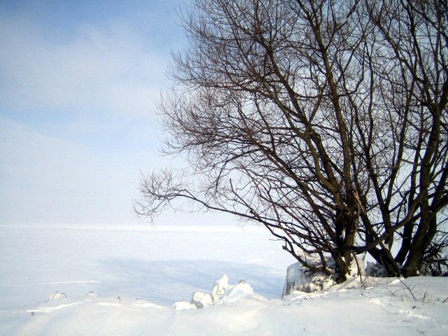 vinter_09 017