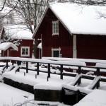 Dagens bild – En stressfri jul.