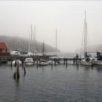 Dimma på kusten, Dagens bild