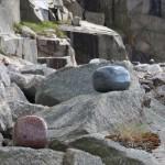 Fler bilder från Skulptur Udden 2012.