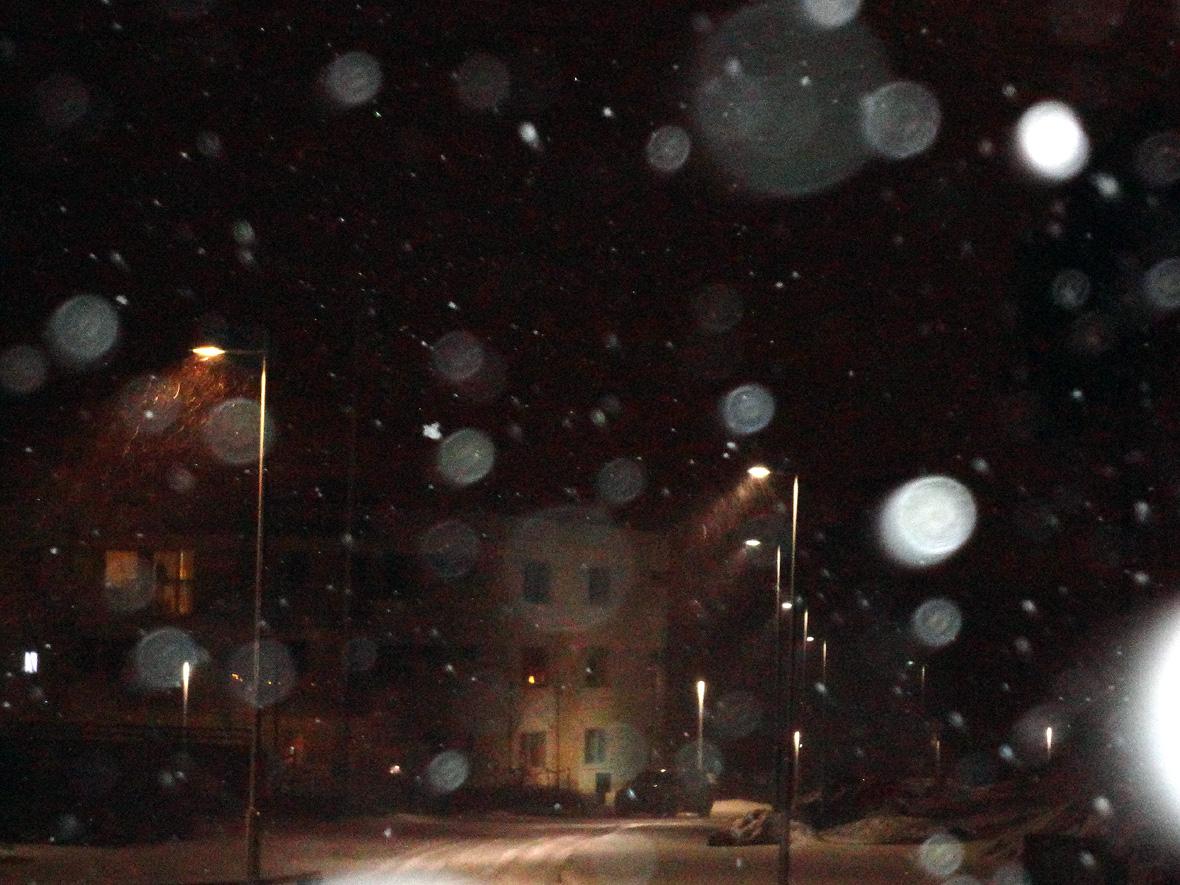snöstormen julen 2012 010