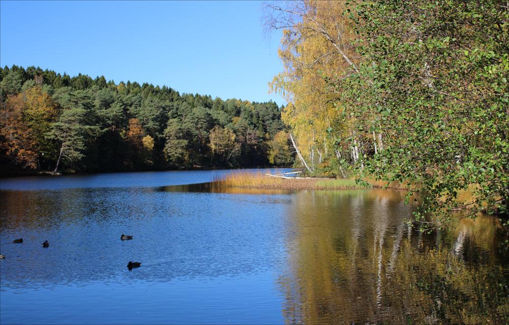 sjön2