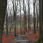Vintern körde hösten på porten.