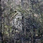 Spökhuset, dagens bild.