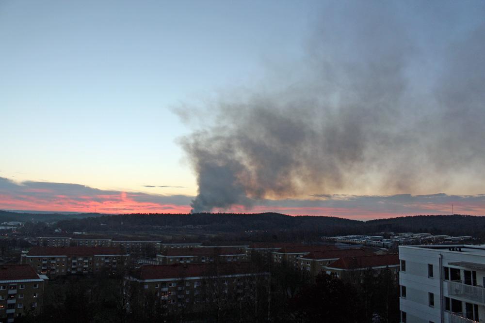 branden6