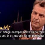 "Jimmy Åkesson gjorde en slät figur i ""Skavlan""."