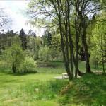Hisingsparken i försommargrönska, bilder.