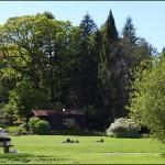 Botaniska trädgården i Göteborg, Bilder.