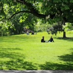 Ännu en oas mitt i Göteborg, bilder.
