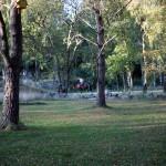 Höststämning i Hisingsparken, bilder