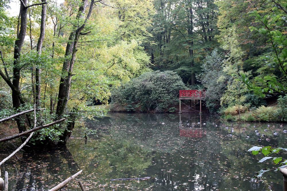 slottsskogen 017