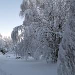 Utsikten, Hisingsparken  och Brunnsparken i vinterdräkt, bilder.