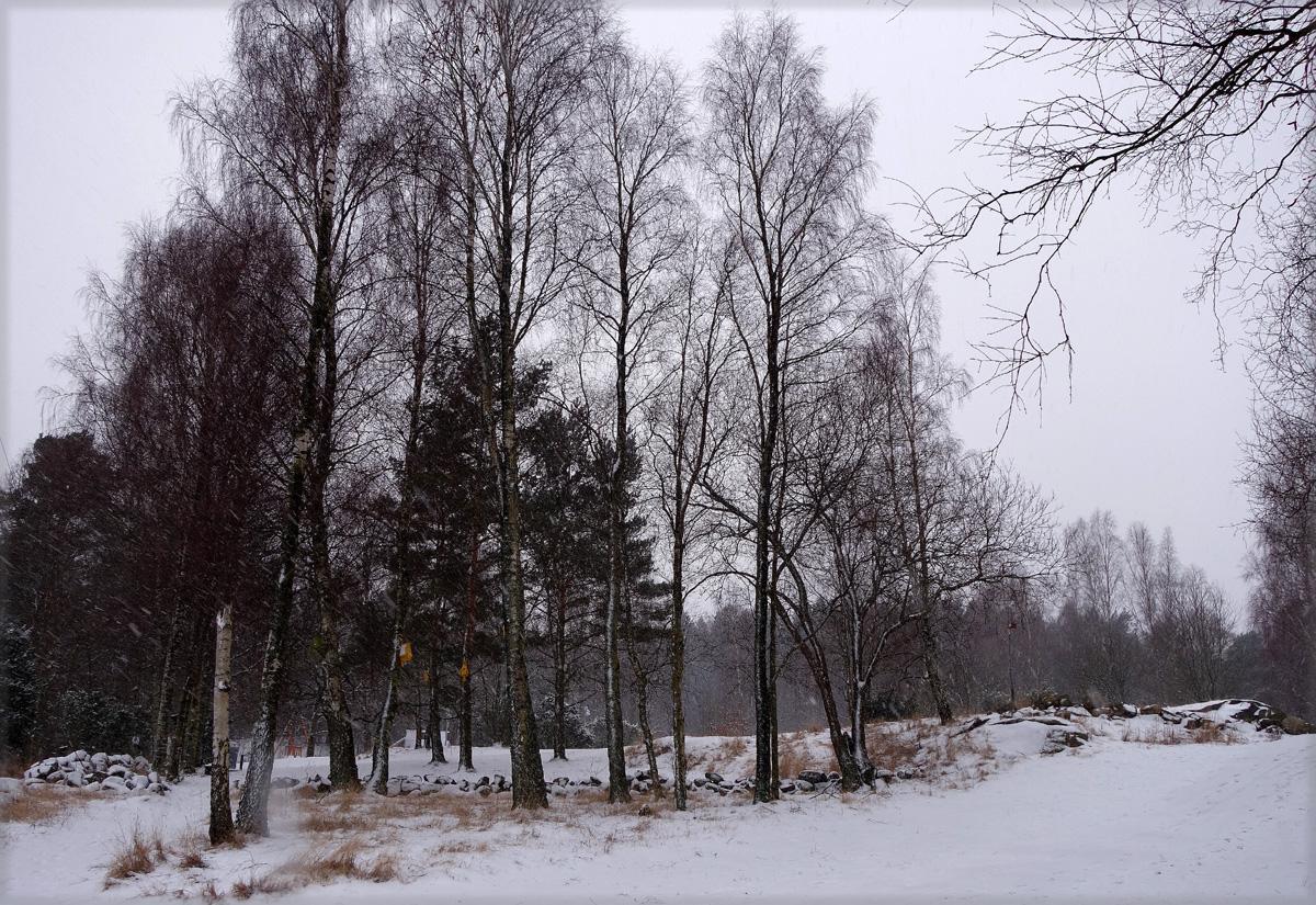snö 007