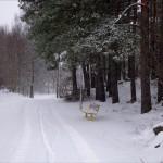 Snön har landat på Hisingen, bilder.