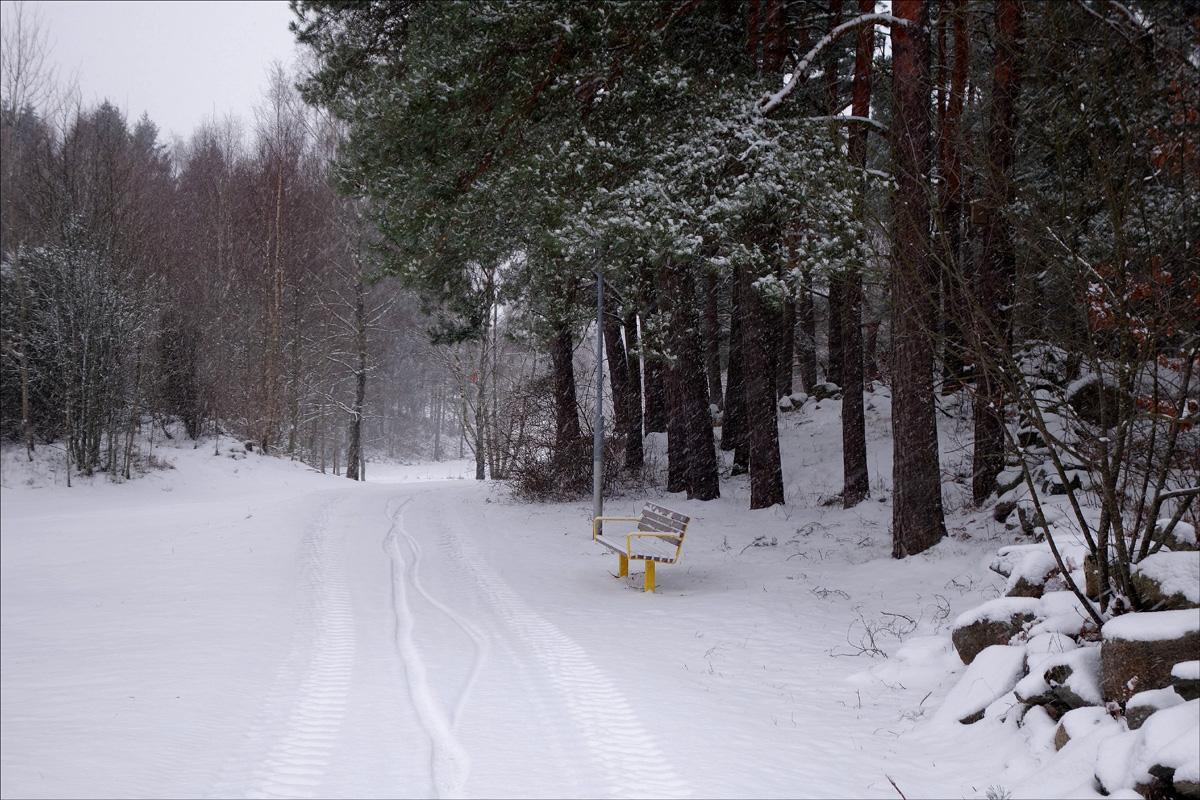 snö 009