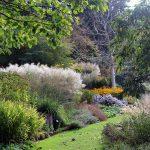 Botaniska trädgården en oas mitt i Göteborg, bilder.