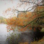 Innan löven faller, promenad runt Slättadamm, bilder